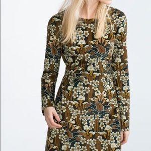 ZARA Trafaluc floral corduroy dress sz S